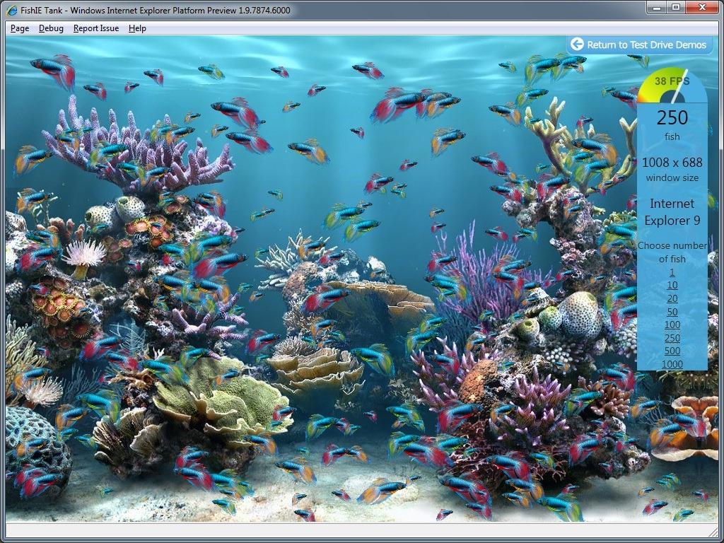 Fish250.jpg
