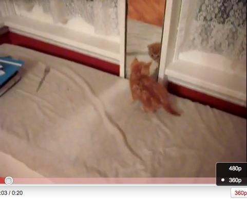 Screen shot 2010-06-12 at 14.33.26