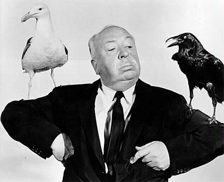 Hitchcock Birds