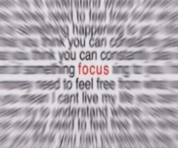 231-focus1