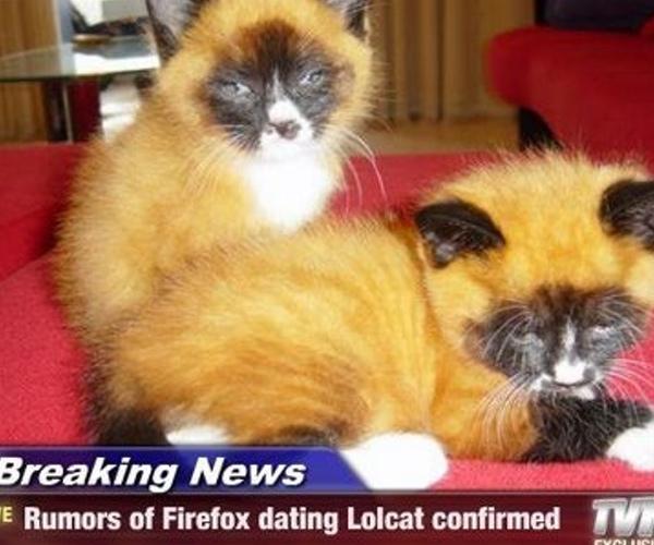 firefox lolcat