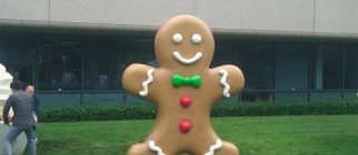 google-android-gingerbread-500x375