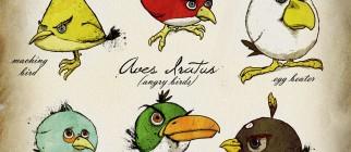 angry-birds-darwin