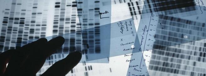 Desktop-DNA-8