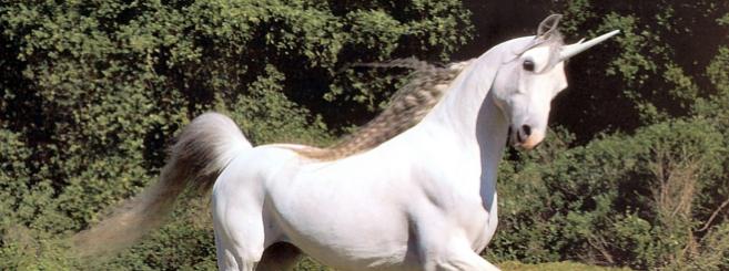 unicorns_csg010