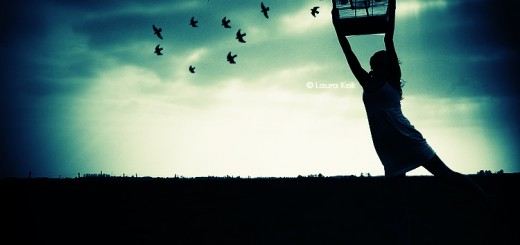 Free_Birds_by_ByLaauraa