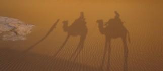 Sahara-Morocco-Desert-Camel-Trek-1641