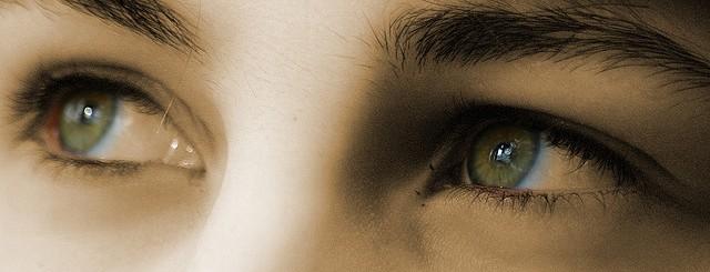 Diffbot Eyes