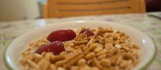 Kashi-Fiber-Cereal