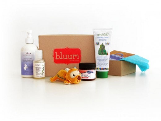box detail 520x390 Bluum helps new moms discover great products through monthly samples
