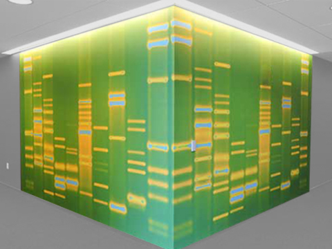 DNA11 DNAWALLPAPER 2 Ultimate Geek Cred: Own a rug or wallpaper designed by your DNA