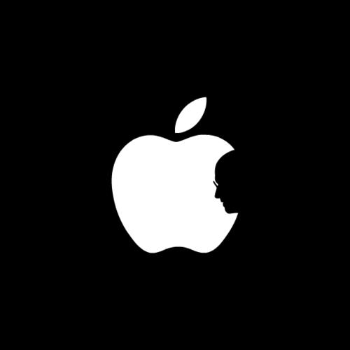 steve On Steve Jobs.