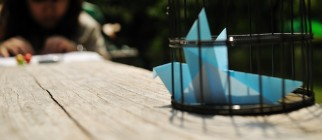 l'oiseau bleu bird cage by ajari
