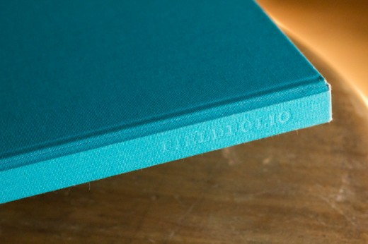 IMG 6183 520x346 The Fieldfolio is a beautiful case for your new iPad that doesnt sacrifice toughness