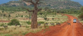 african_safari_route-520×390