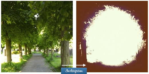 instagrammed What happens when you apply every available Instagram filter to one photo?