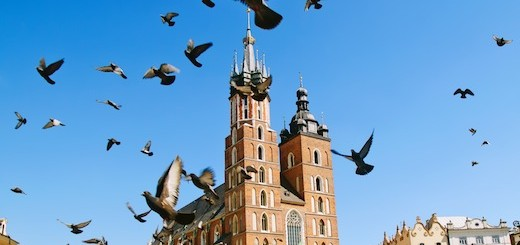 Church and the pigeons. Krakow