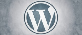 wordpress1