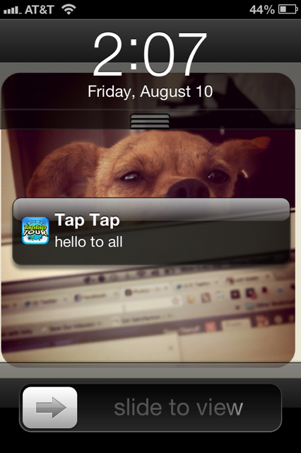 photo 8 App developers: Sending your users test push notifications is annoying, so dont do it