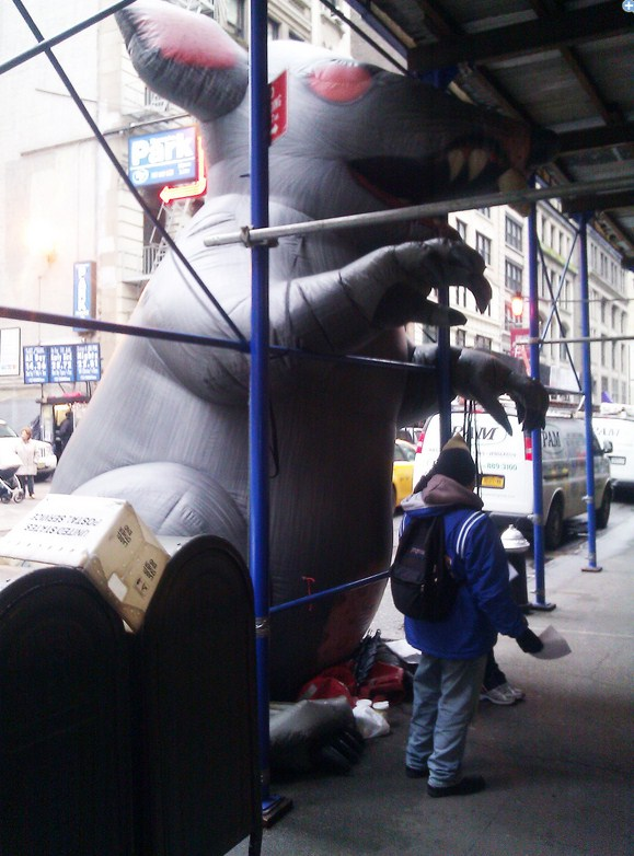 2012 12 17 10h19 30 Tumblrs Manhattan office is currently haunted by a large, inflatable rat