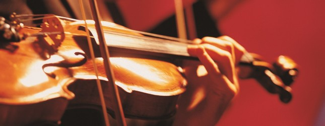Violinists' Hands