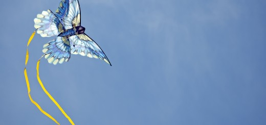 blue kite via thinkstock