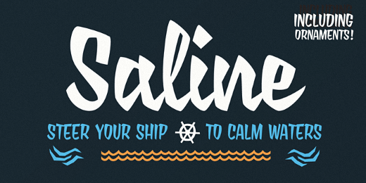 saline 38 Of the most beautiful typeface designs released this winter