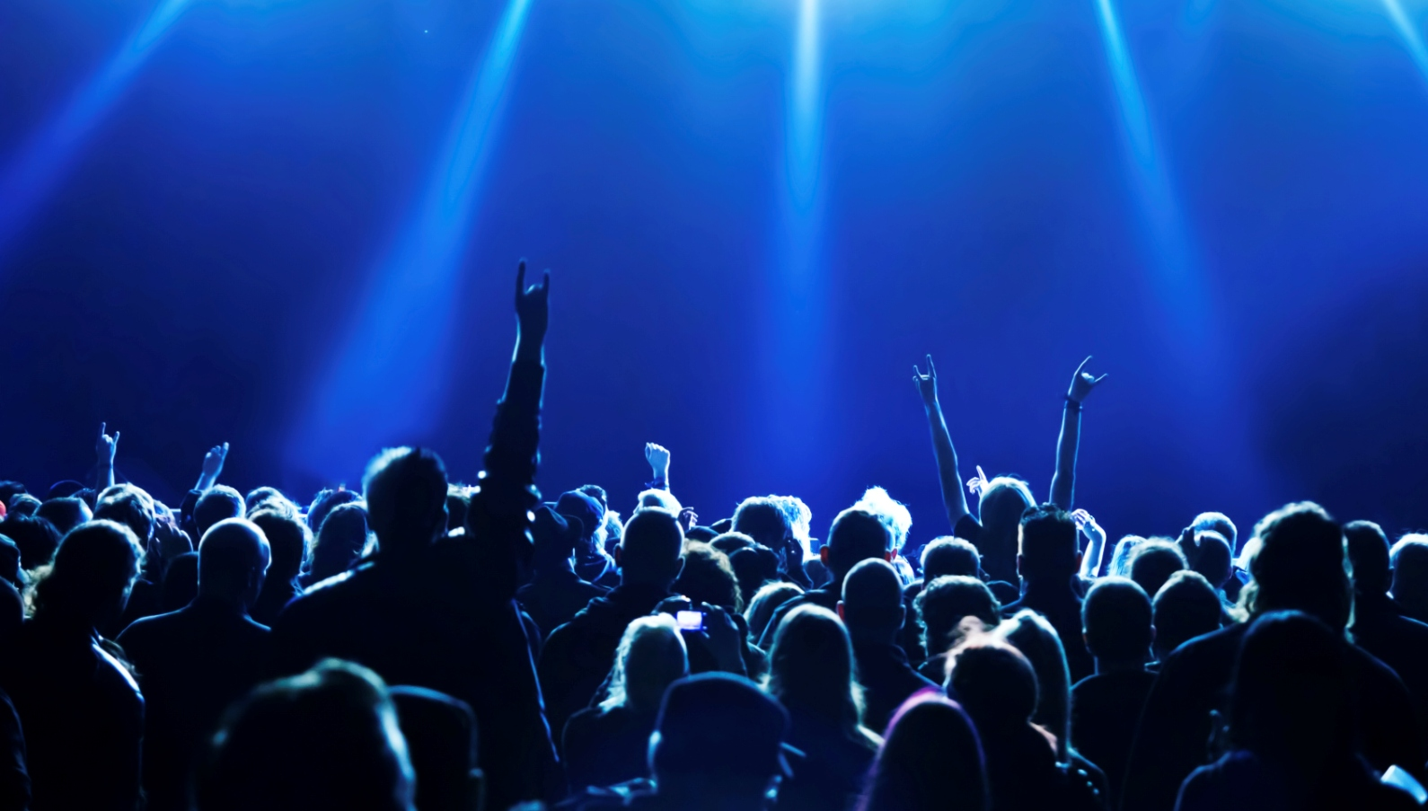 imaginative experience in a music concert essay