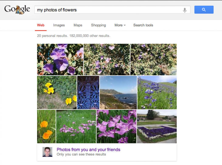 2013 05 23 730x544 Google brings your Google+ photos right into Search, serves results via computer vision and machine learning