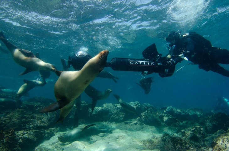 GP3 730x483 Google Maps Street View to get panoramic images from the Galapagos Islands