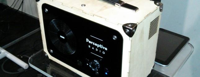 perceptive-radio