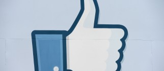 "A thumbs up or ""Like"" icon at the Facebo"