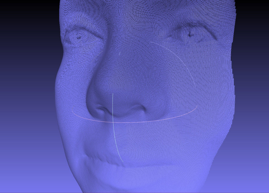 Fuel 3D scan of a female face