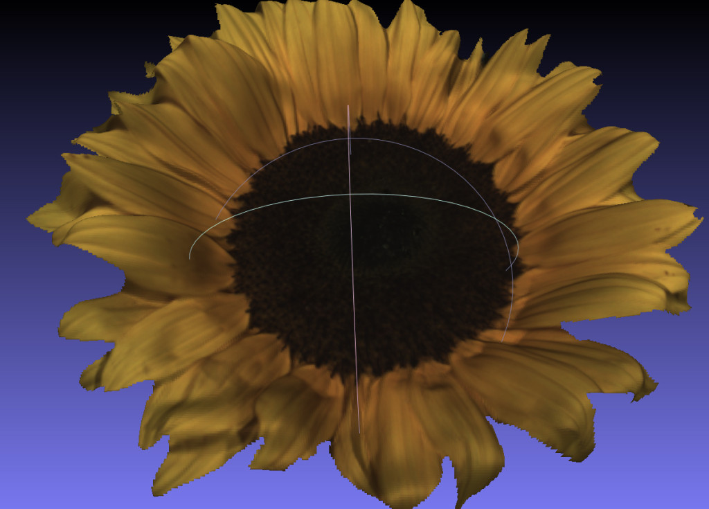 Full color sunflower scan using Fuel3D