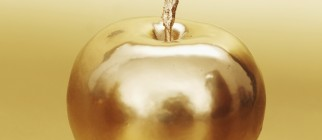 goldenapple-crop