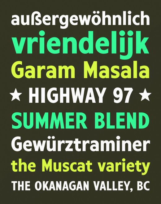 harvey 28 of the most beautiful typefaces released last month