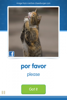b5 220x330 CatAcademy wants to help you learn new languages using pictures of cats