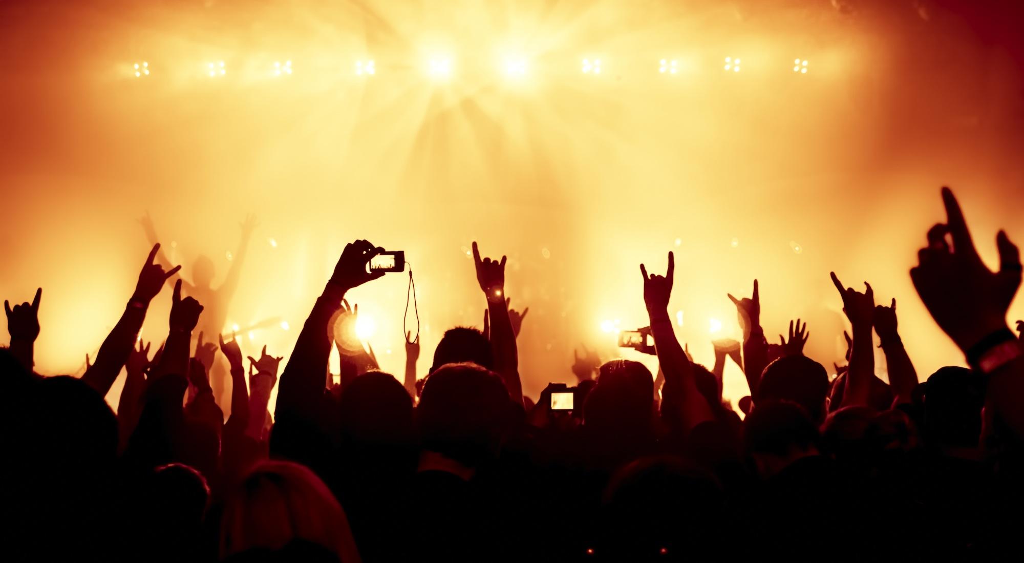 concert audience
