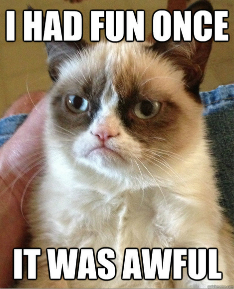 GrumpyCat 1 13 of the best memes from 2013