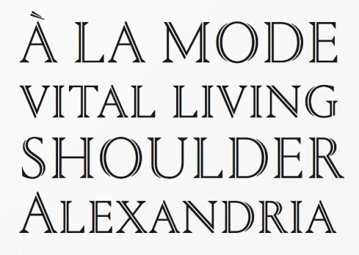 portrait 520x369 The best typefaces of 2013