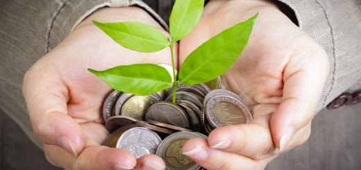 Money seed
