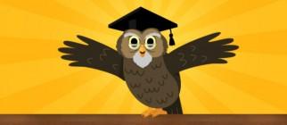 Wyzowl-owl