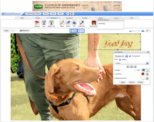 Screen Shot 2014 02 15 at 1.19.29 AM 520x410 The 9 best browser based photo editing tools available today