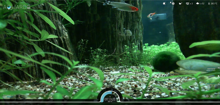 aquardio2 730x351 Bored at your desk? Kill a few minutes by feeding some real fish via this Web app