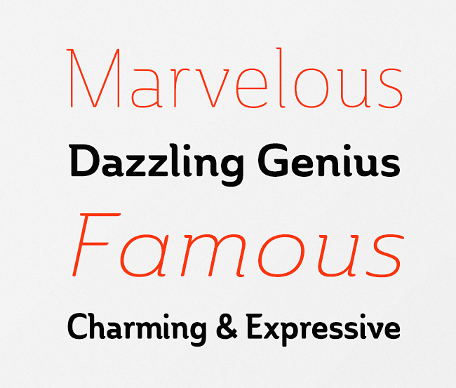 ainslie Our favorite typefaces from February 2014