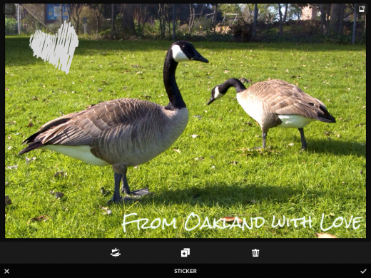 photo 2 520x390 Rookie may just be an ideal replacement for your iPhones built in camera app