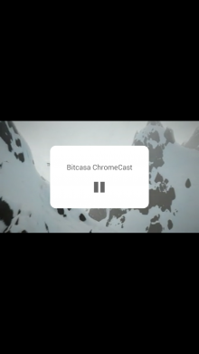 2014 04 22 15.53.06 220x391 Bitcasa for Android now lets you stream videos and music directly to your TV with Chromecast