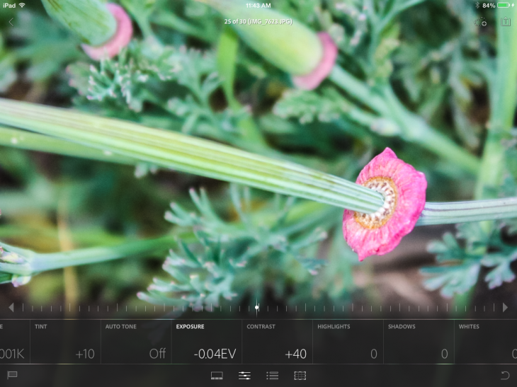 photo1 730x547 Adobe Lightroom Mobile for iPad highlights integrated collaboration between the desktop and tablet