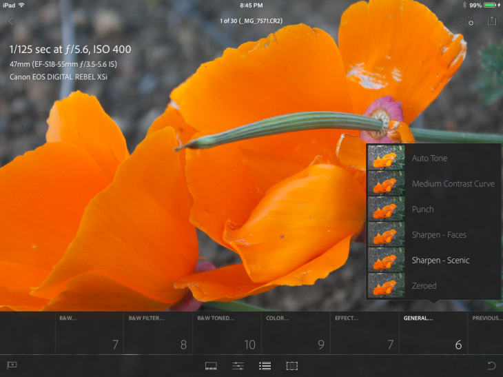 photo4 730x547 Adobe Lightroom Mobile for iPad highlights integrated collaboration between the desktop and tablet
