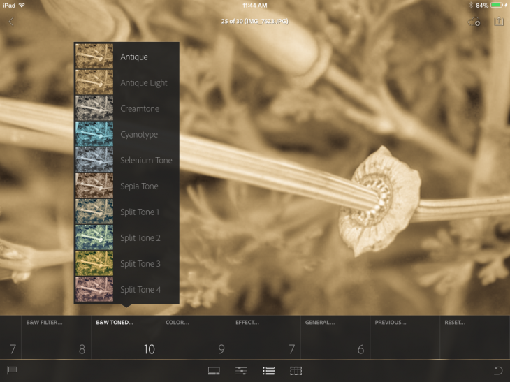 photo6 730x547 Adobe Lightroom Mobile for iPad highlights integrated collaboration between the desktop and tablet